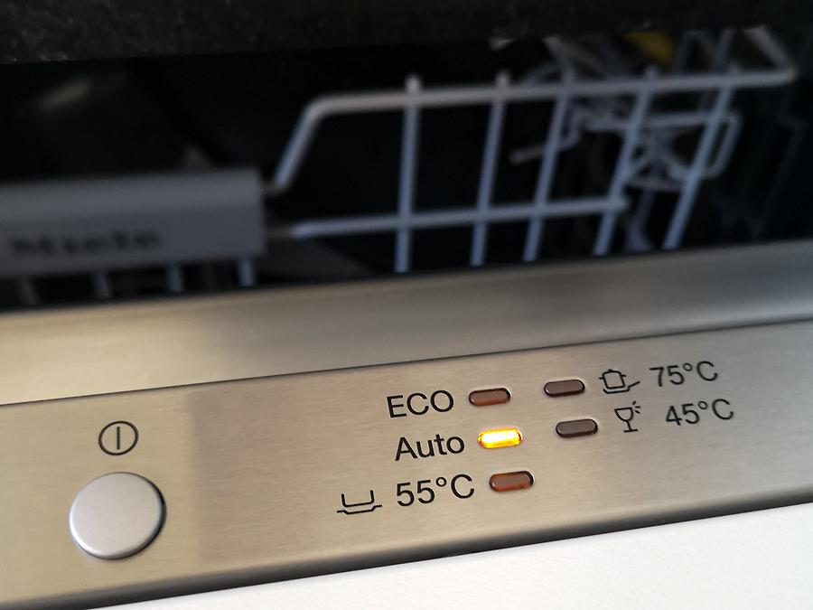 Die zirpende Spülmaschine