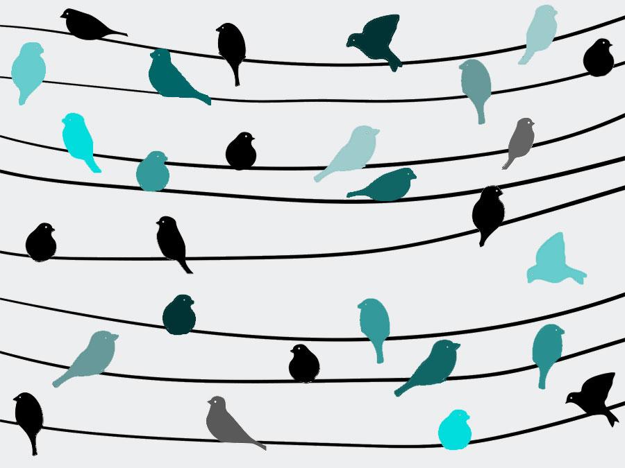 Twitter-Lieblinge im Dezember